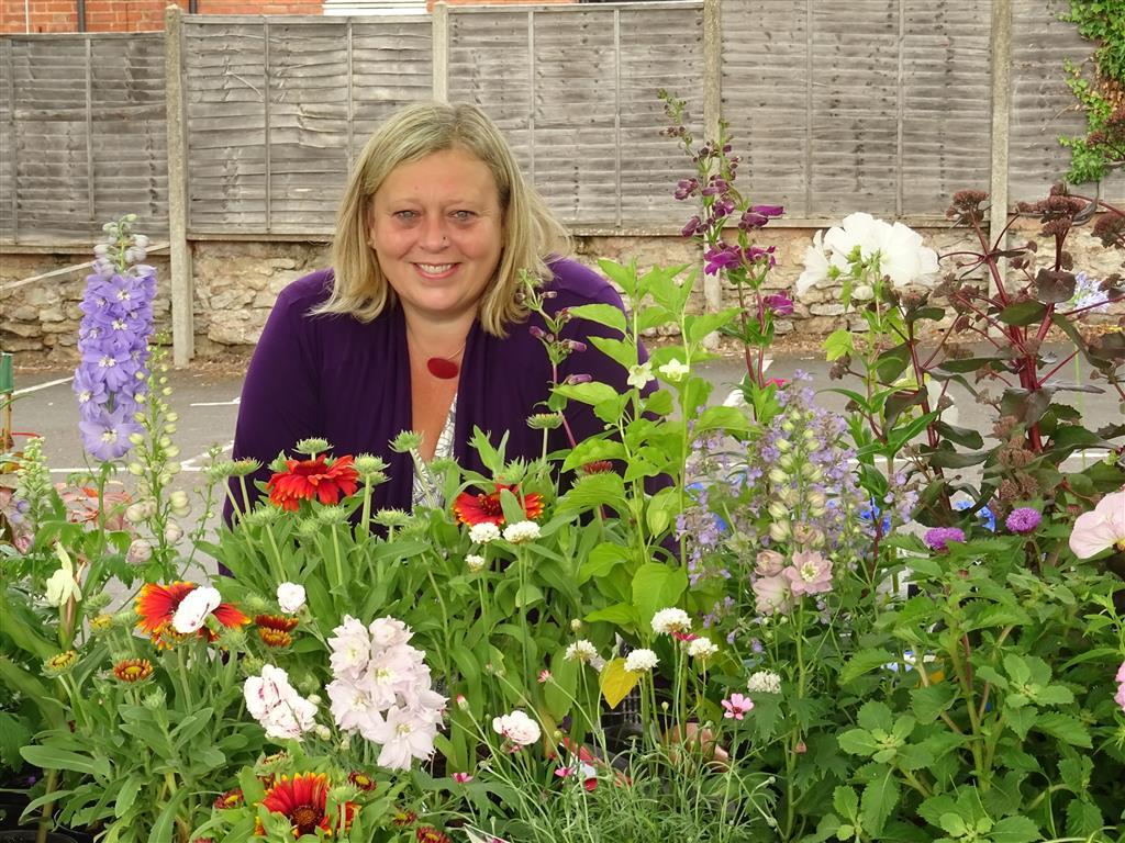 Plants from Wykeham Gardens DSC01462