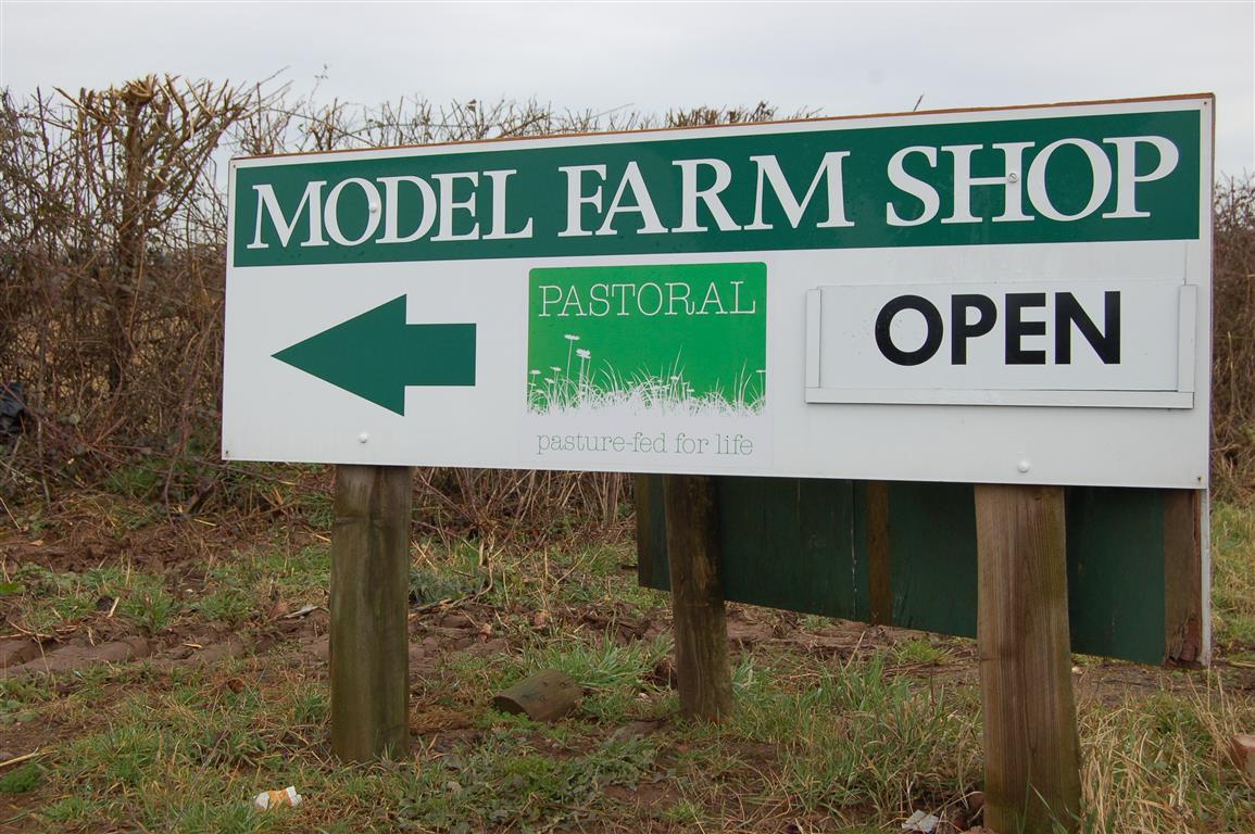 Model Farm