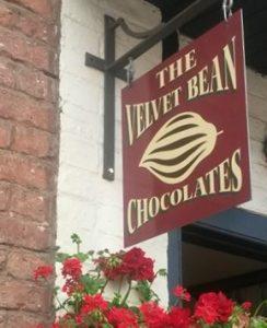 Velvet Bean 4 - cropped